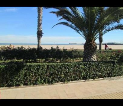 Сдаётся ресторан на побережье города Валенсия