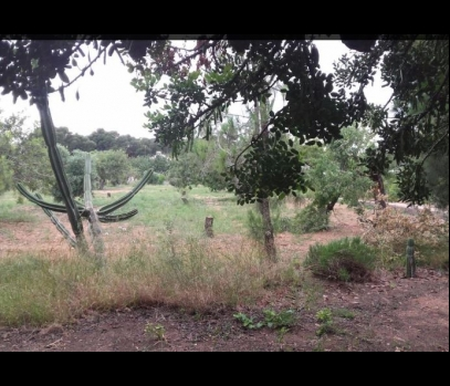 Продажа земли под застройку в пригороде Валенсии, Испания